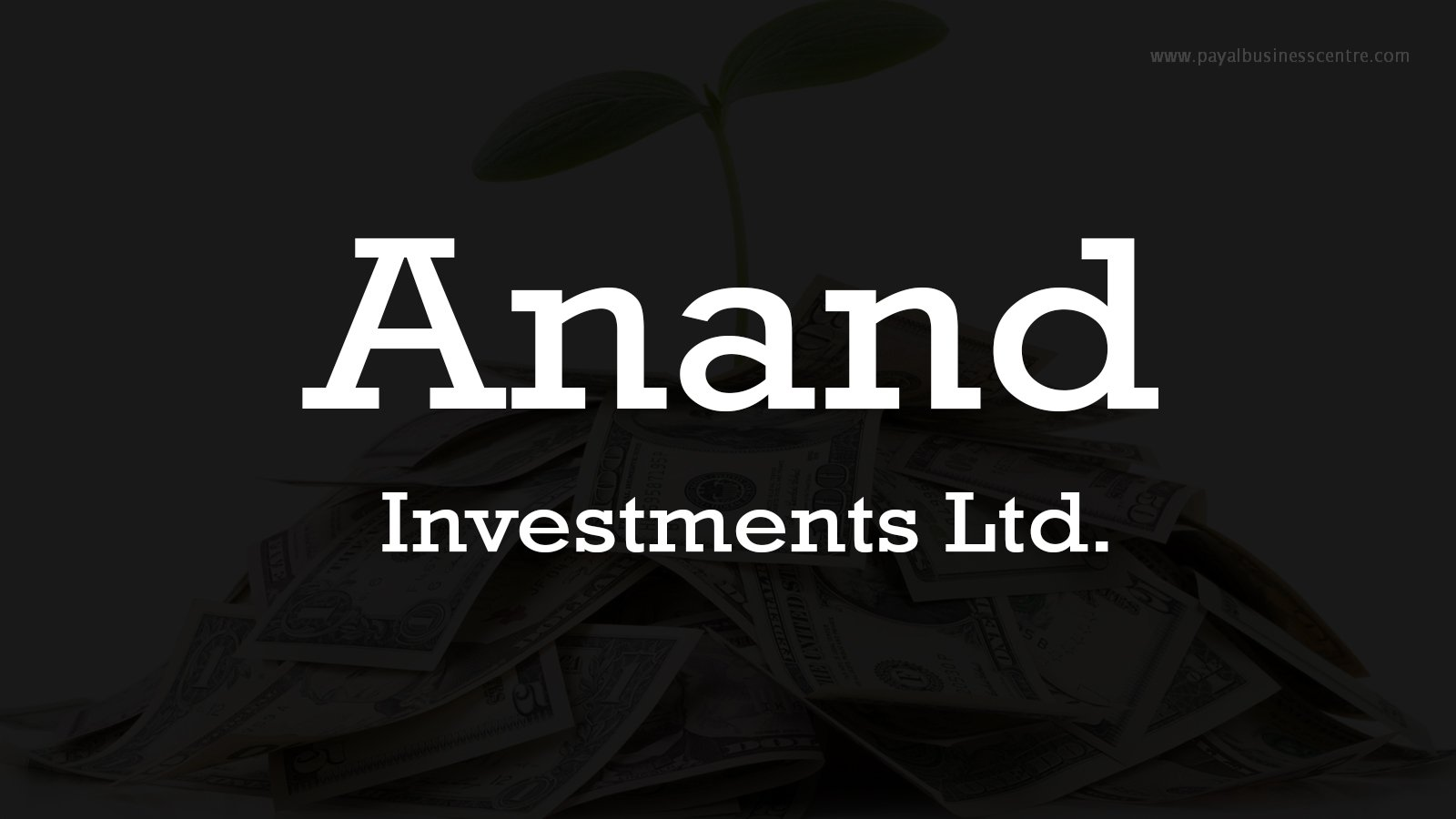 Anand Investments Ltd.