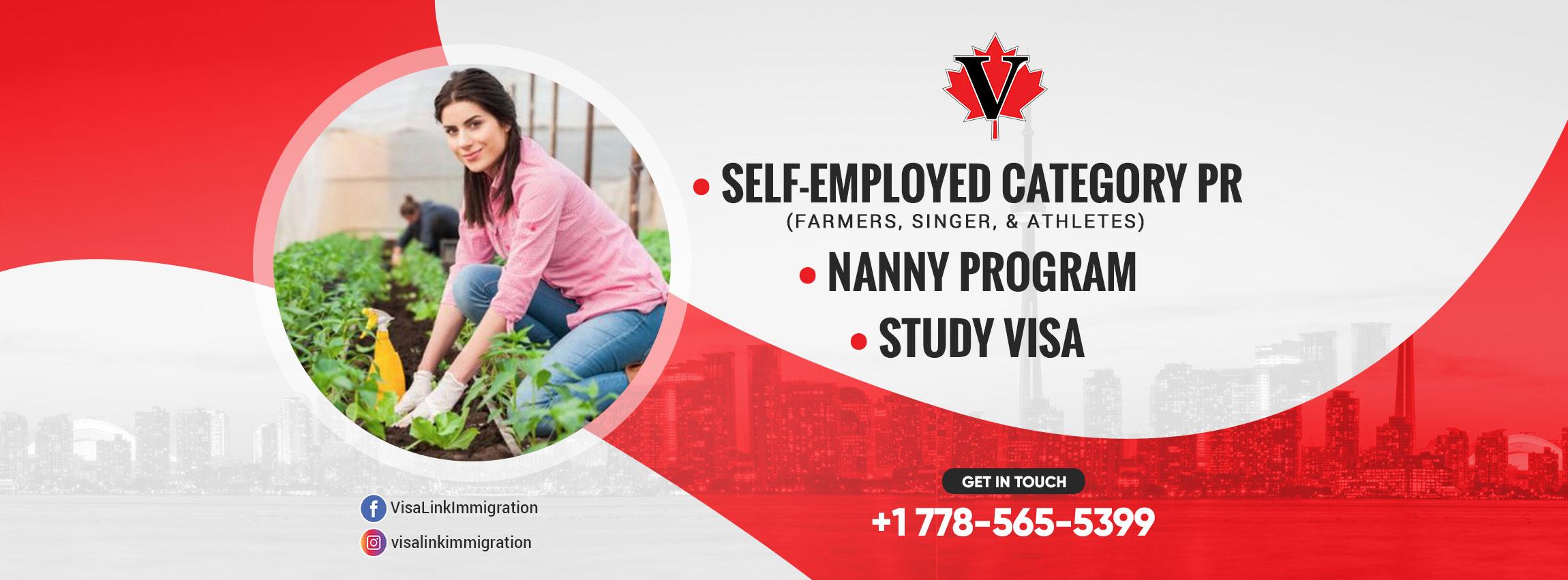 Visa Link Immigration